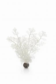biOrb Hornkoralle mittelgroß weiß