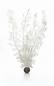 biOrb Hornkorallen extra groß weiß