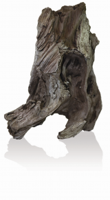 biOrb AIR Steinwurzel Ornament neck
