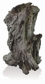 biOrb AIR Steinwurzel Ornament trunk