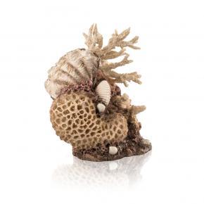 biOrb Korallen-Muschel Ornament natural