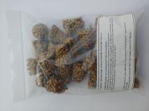 25 Stück Osmocote® Düngekegel, Seerosendünger 7,5 g