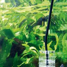 JBL ProFlora T3 BLACK (CO2 Schlauch)