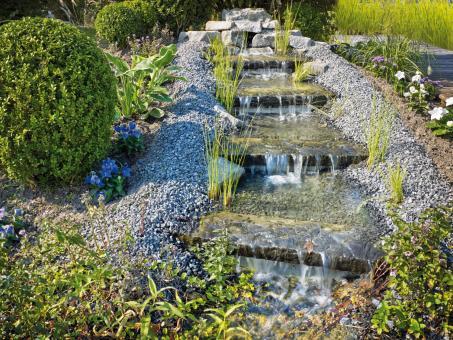 oase aquaactiv algo bio protect 500 ml 51279. Black Bedroom Furniture Sets. Home Design Ideas